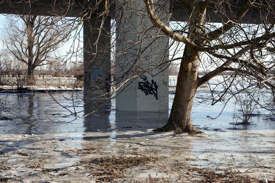 brückenpfeiler und bäume im gefroren hochwasser