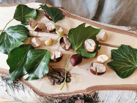 Efeu und Kastanien enthalten Saponiene und sind als alternatives Waschmittel verwendbar - umweltbewußtes und nachhaltiges waschen, 100% abbaubar