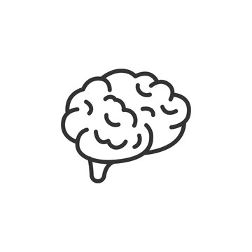 Human brain. Vector outline icon with editable strokes isolated on white background.