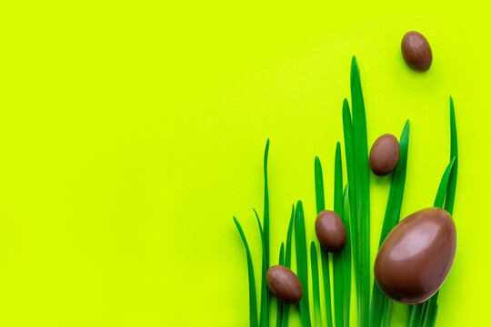 Easter big and small chocolate eggs lie on long blades the grass, . Yellow green plain background. Place for text, copy space.