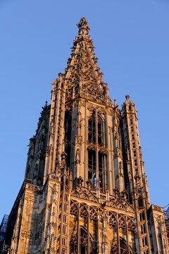 Turm des Ulmer Münsters