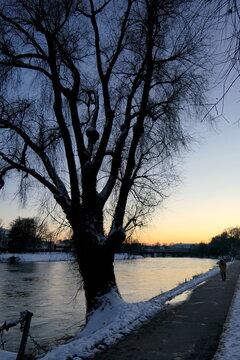 Abendstimmung am Neckar