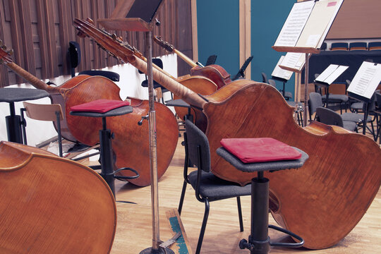 Close-up of contrabasses on a stage