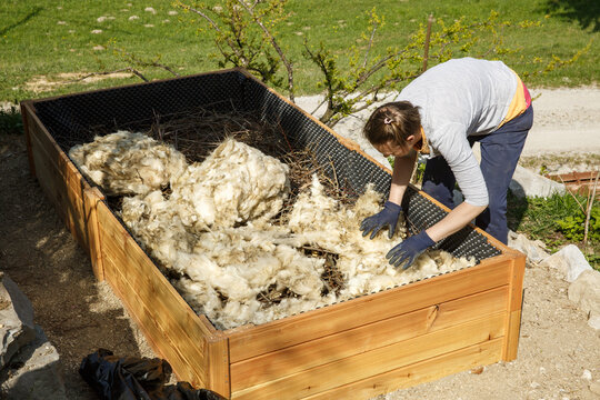 Woman preparing layers in a new raised garden bed: raw wool, branches and logs.