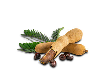 Fototapete - Tamarind with leaves and seeds on white background with clipping path. Ripe tamarind peel shell and hard dark seeds.