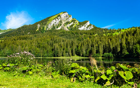 Landscape of Obersee lake in the canton of Glarus in Switzerland