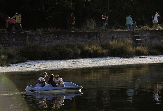 People use a paddle boat near thousands of dead sardines washed up on the shores of the Laraquete river, in Laraquete