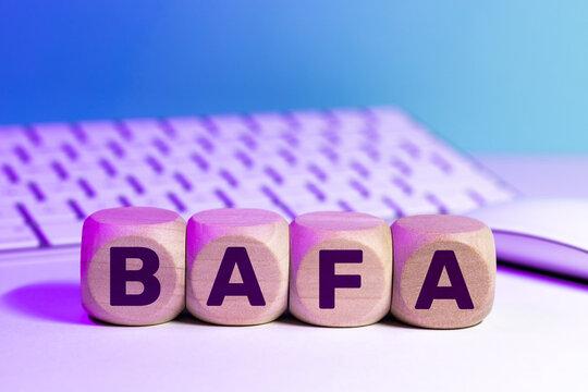 BAFA - brevet d'aptitude aux fonctions d'animateur