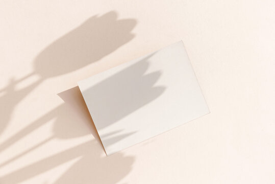 Blank card mockup on light pastel background with moody tulip flowers shadows and copy space.