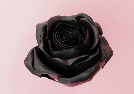 one beautiful shiny black Rose Bud close up, 3d render