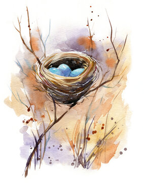 Watercolor illustration of a bird nest with blue eggs hidden in shrubs