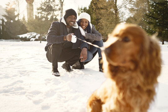 People walks outside. Winter day. African couple with dog.