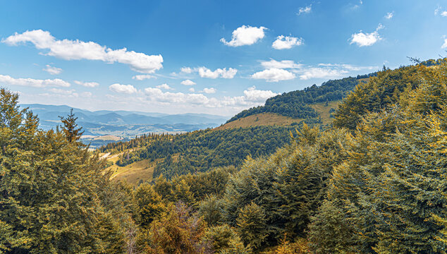 Mountain landscape in the autumn. Panorama of the year in yellow colors.