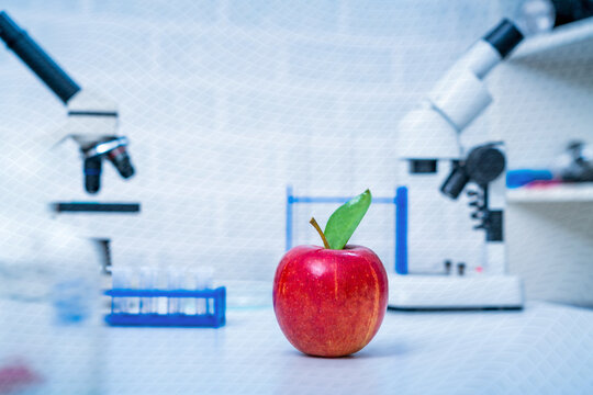 Chemical Laboratory of the Food supply .Red Apple