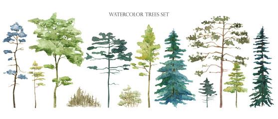 Fototapeta Watercolor tree set. Green pine, blue spruce, lush ash, beige bush obraz