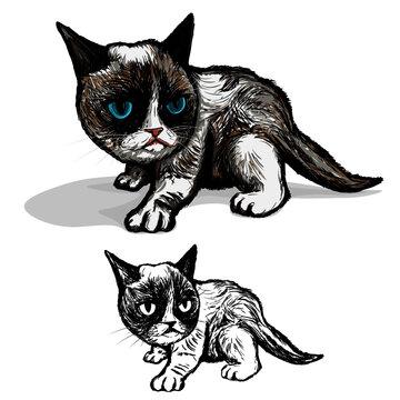 Illustration of grumpy kitten