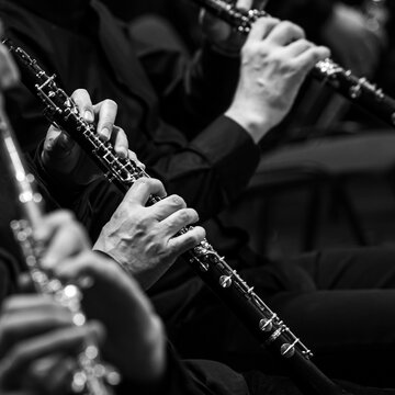 Hands of a musician playing the oboe close-up in black and white