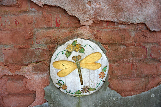 A special wall. Old bricks, the red and grey plaster half-crumbled with an old round tile with a gold colored dragonfly
