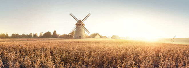 Fototapeta Rural landscape at dawn, terrain with oat fields and from the and a windmill and village on the hill. Raster illustration. obraz