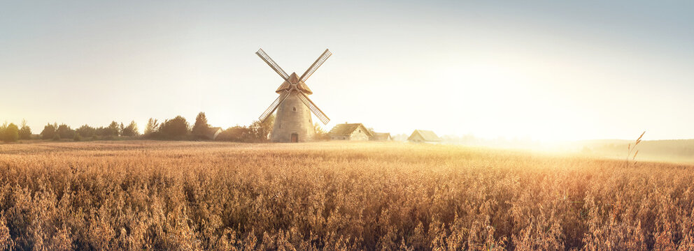 Rural landscape at dawn, terrain with oat fields and from the and a windmill and village on the hill. Raster illustration.