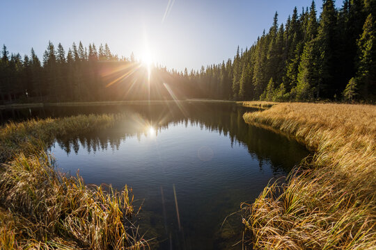 Morning Landscape With Lake in a Mountain Forest.