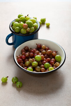 Green and red gooseberries in enamel bowl and cup, summer concept