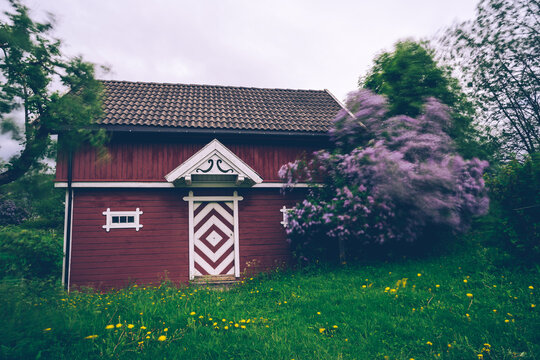 Lilacs by a food storage house of a farm.