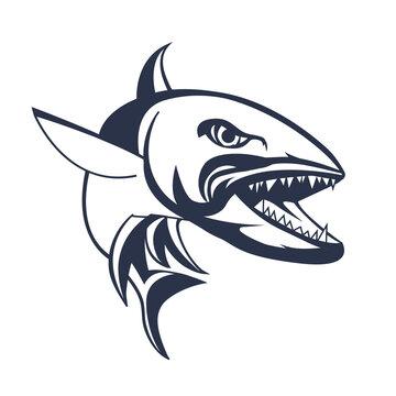 barracuda  ingking illustration artwork