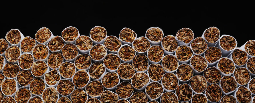 Cigarettes. Tobacco product. Heap of Tobacco Cigarettes on black background, close up from the front. Panoramic macro image, hi-res banner.