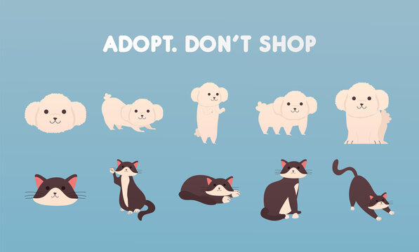 adopt dont shop lettering with group of dogs and cats