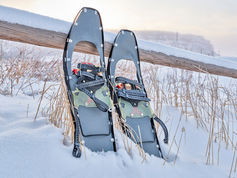 modern metal snowshoes for rolling terrain in winter scenery at foothills of Rocky Mountains in northern Colorado - Lory State Park