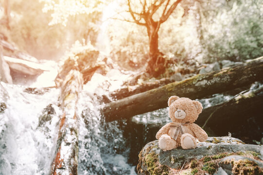teddy bear sitting on the top of stone at waterfall