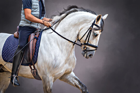 The Carthusian Horse