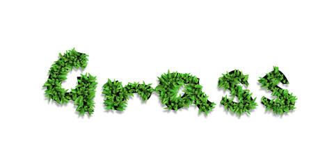 Fototapeta Text mit dem Pflanzen.