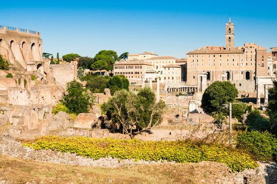 Roman Forum, Palatine Hill on the right, Rome