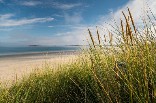 Coast near Plouguerneau on a sunny day in summer