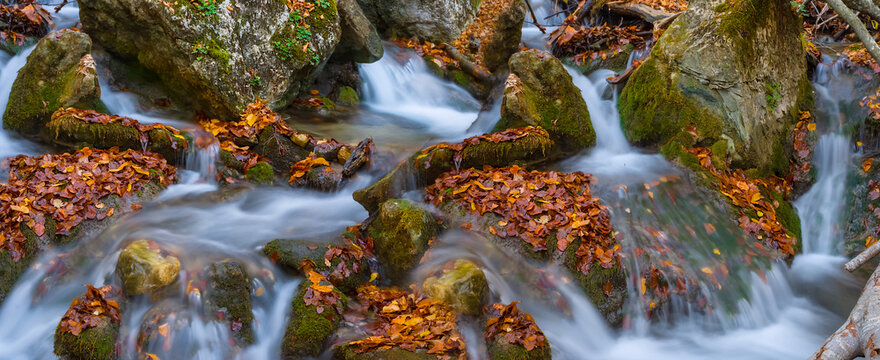 closeup small creek stream over a stones