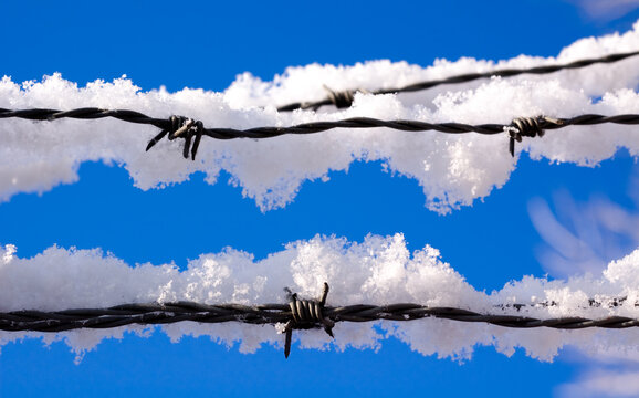 snow covered barbed wire fence