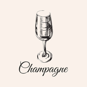Champagne Glass Hand Drawing Vector Illustration Bubbles. Alcoholic Drink.