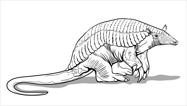 A giant armadillo with thick legs stands on the ground. Big fat animal. Coloring page for children and adults, hand drawn illustration