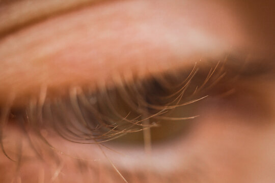 male eye close up. eyelashes in macro. upper and lower eyelid