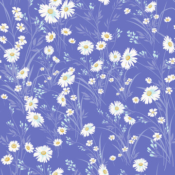 Seamless spring floral pattern with daisies