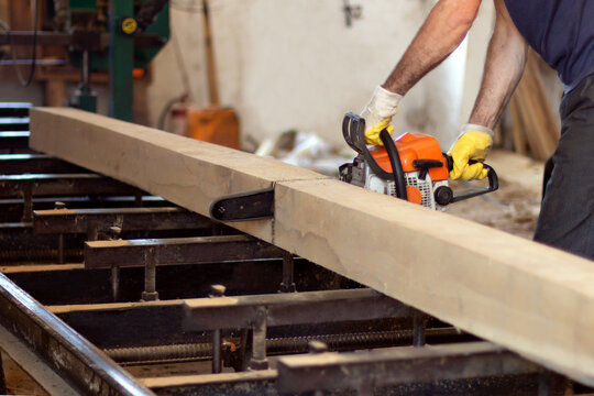 Hardwood processing. A man holds a chainsaw and saws a tree. The sawdust is flying. a man cuts a bar with a chainsaw.
