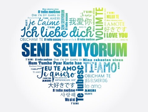 Seni seviyorum (I Love You in Turkish) love heart word cloud in different languages of the world