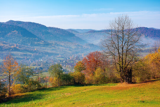 mountainous rural landscape in autumn. trees the edge of a hill in colorful foliage. sunny day with bright blue sky