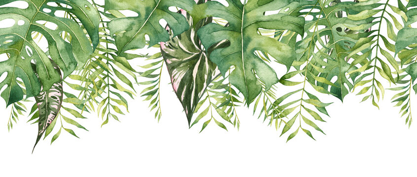 Seamless long banner with hanging tropical leaves