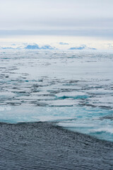 Norway. Svalbard. At 80 degrees north right on the edge of the pack ice, as brash ice ends and open water begins.