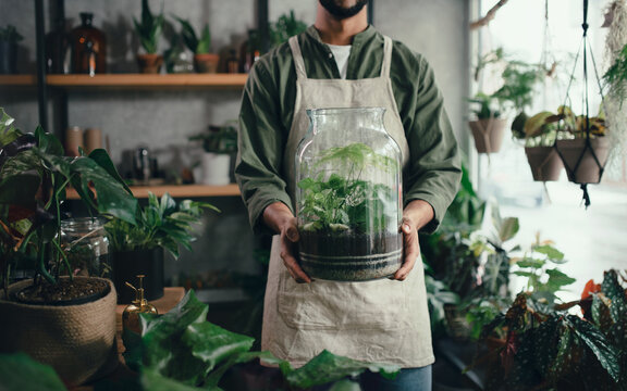 Shop assistant holding terrarium in indoor potted plant store, small business concept.