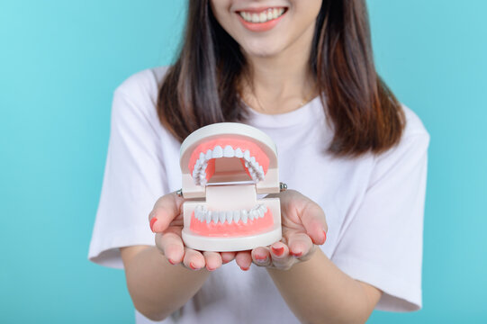 Smiling Asian woman holding tooth model on blue screen background. Dental care and healthy teeth.