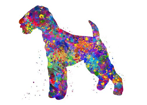 Airedale Terrier Dog watercolor, abstract painting. Watercolor illustration rainbow, colorful, decoration wall art.